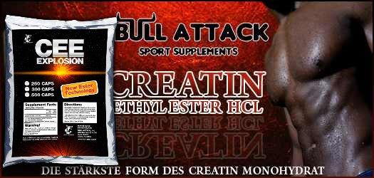 http://bull-attack.com/images/cee.jpg