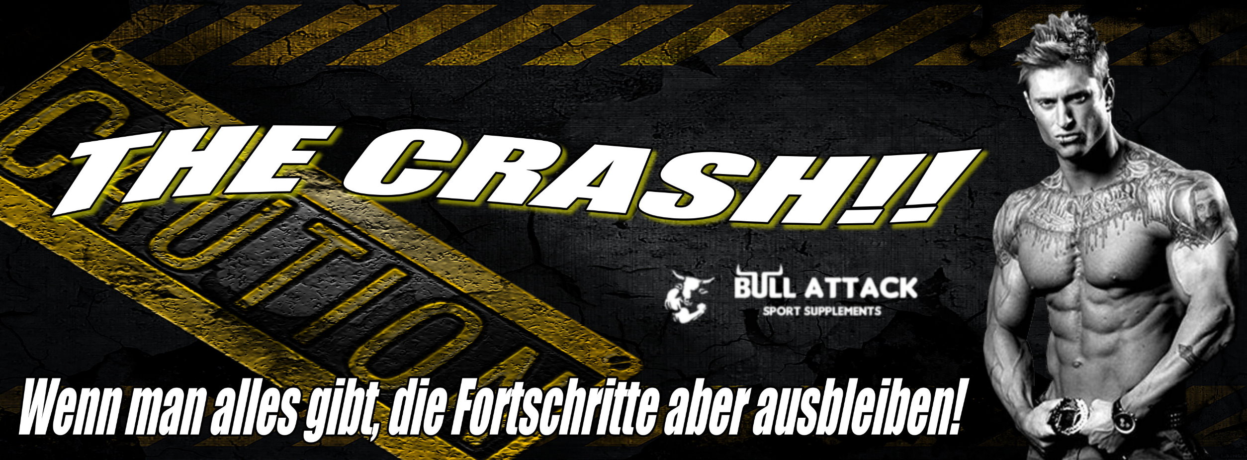 http://bull-attack.com/images/crash.jpg