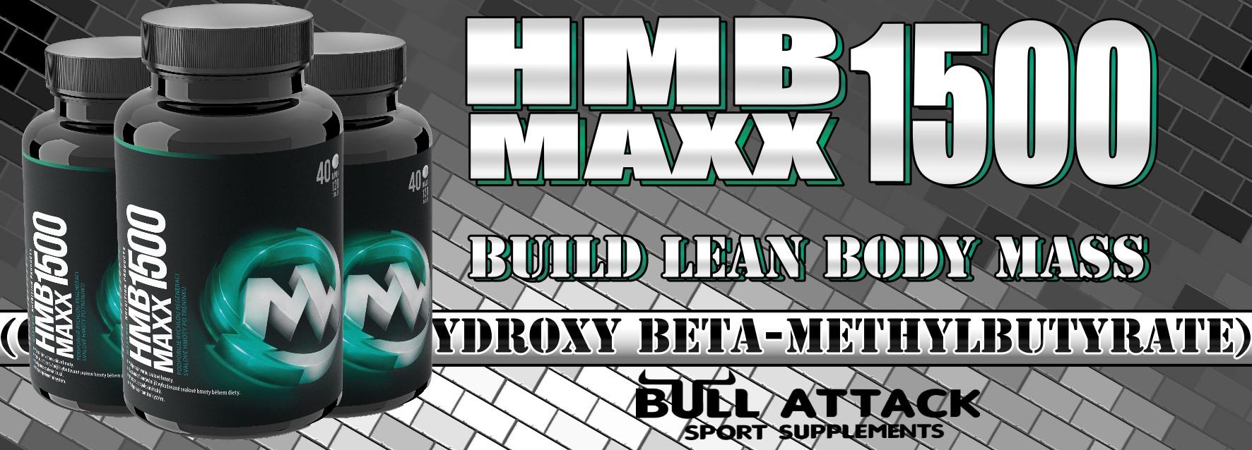 http://bull-attack.com/images/hmb-maxx-Banner.jpg